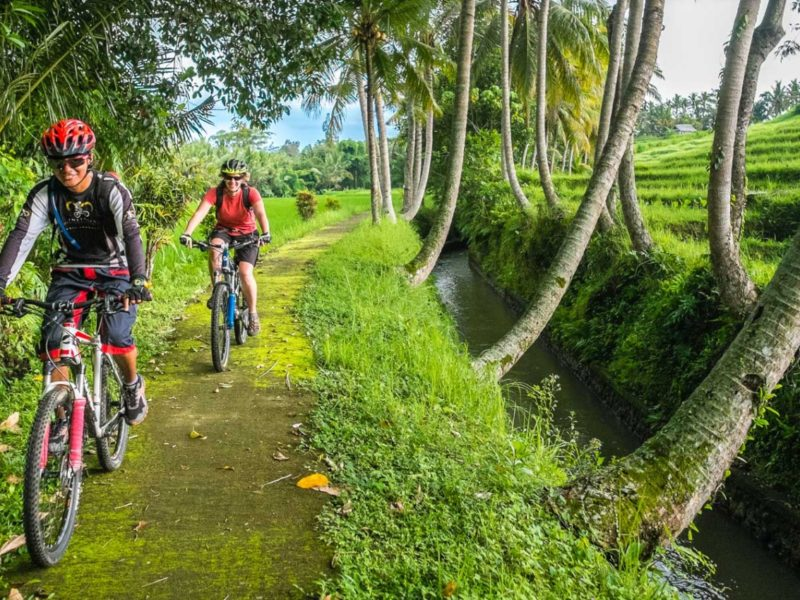 mountainbiking bali